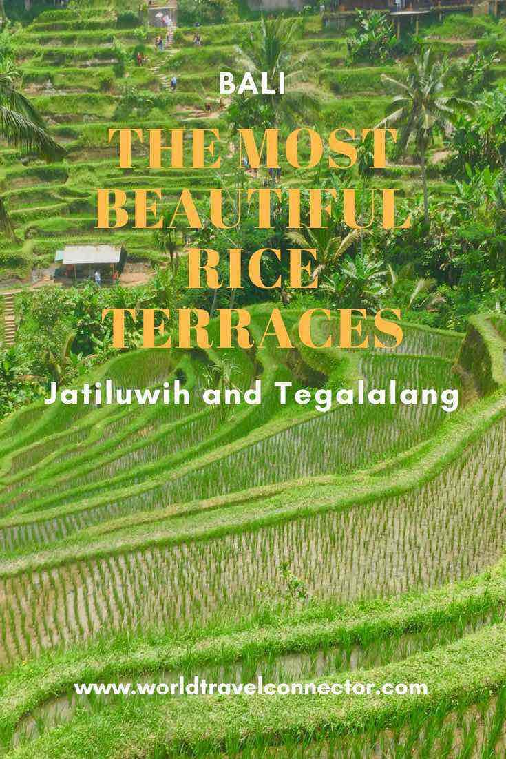 Bali rice terraces Jatiluwih and Tegallalang