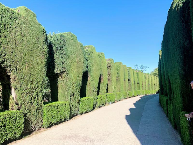 Alhambra tips Calle Real de la Alhambra