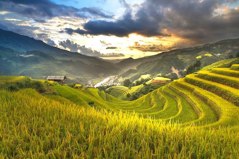 Vietnam Travel - cover