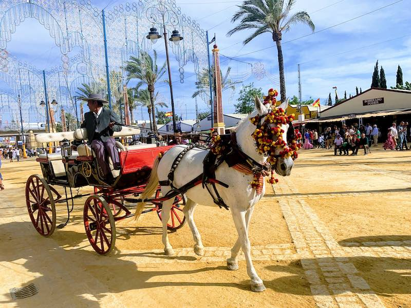 Jerez is one of the best places to visit in Southern Spain