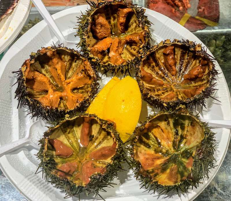 sea urchins are popular seafood in Spain