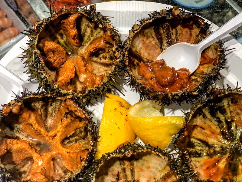 sea urchins are tasty seafood in Spain