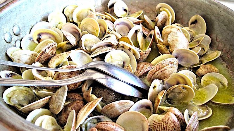 Clams are well liked seafood in Spain