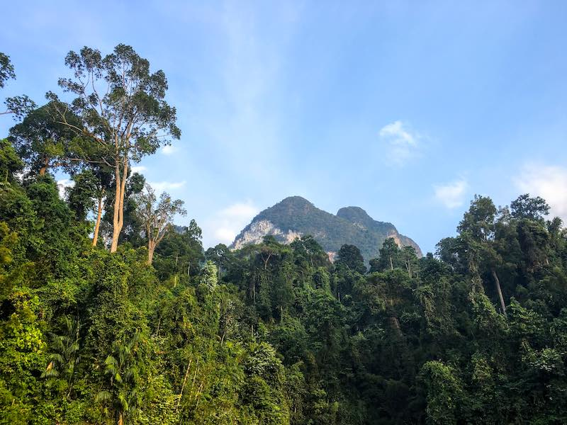 Khao Sok National Park should be on any 10 day Thailand itinerary  I 10 Days Thailand Itinerary I Thailand Itinerary 10 Days I Best Things to do in Thailand in 10 days I Best Things to See in Thailand in 10 days I