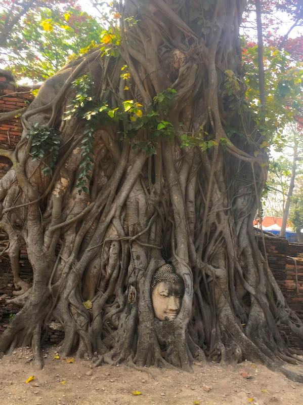 Ayutthaya shoud be on any 10 days in Thailand itinerary  I 10 Days Thailand Itinerary I Thailand Itinerary 10 Days I Best Things to do in Thailand in 10 days I Best Things to See in Thailand in 10 days I