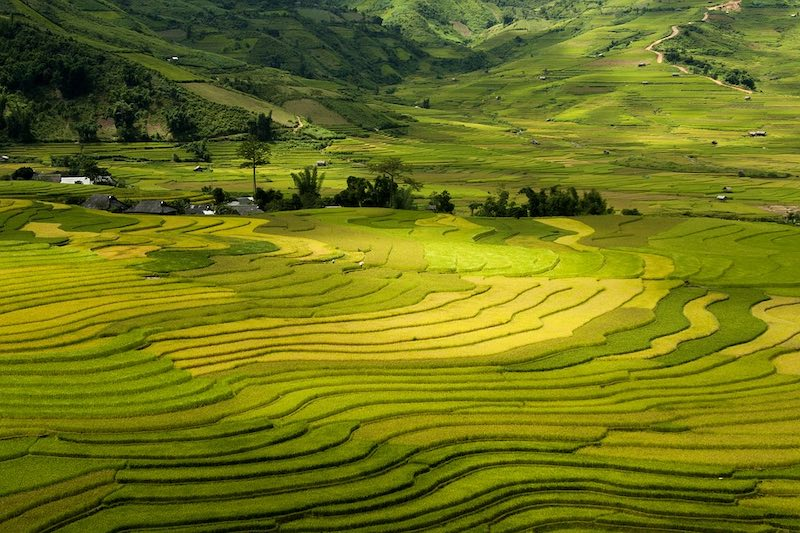 Trekking in Sapa should be on any 10 day Vietnam itinerary