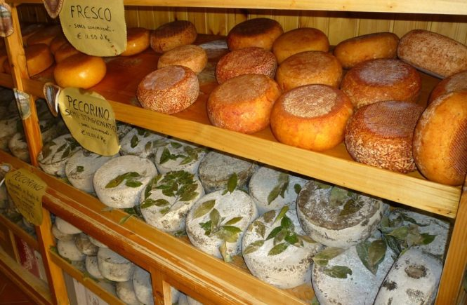 Pecorino Toscano is one of th emost famous traditional Tuscan foods in Tuscany