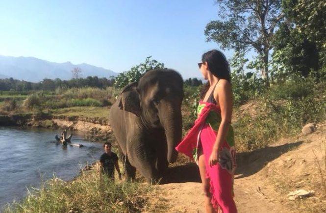 Milijana Gabrić of World Travel Connector in Thailand