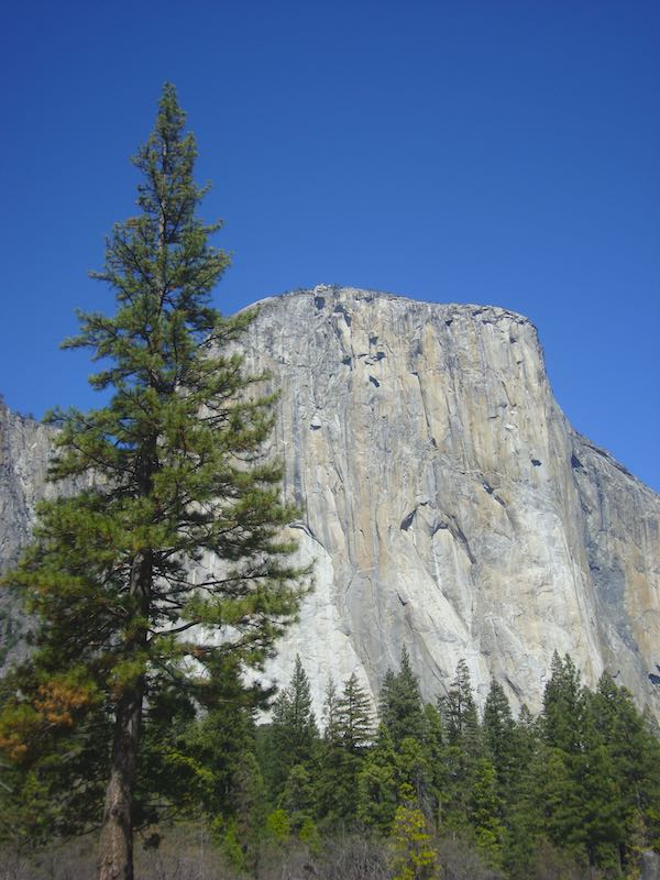 Visiting El Captain in Yosemite from San Francisco