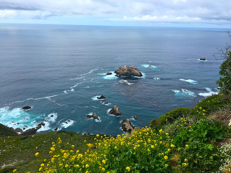 What to do do in Big Sur? Explore amazing Garrapata State Park