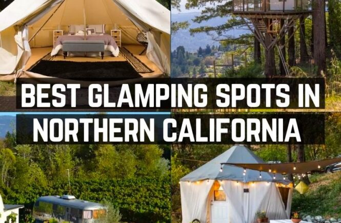 Guide to Best Glamping in Northern California
