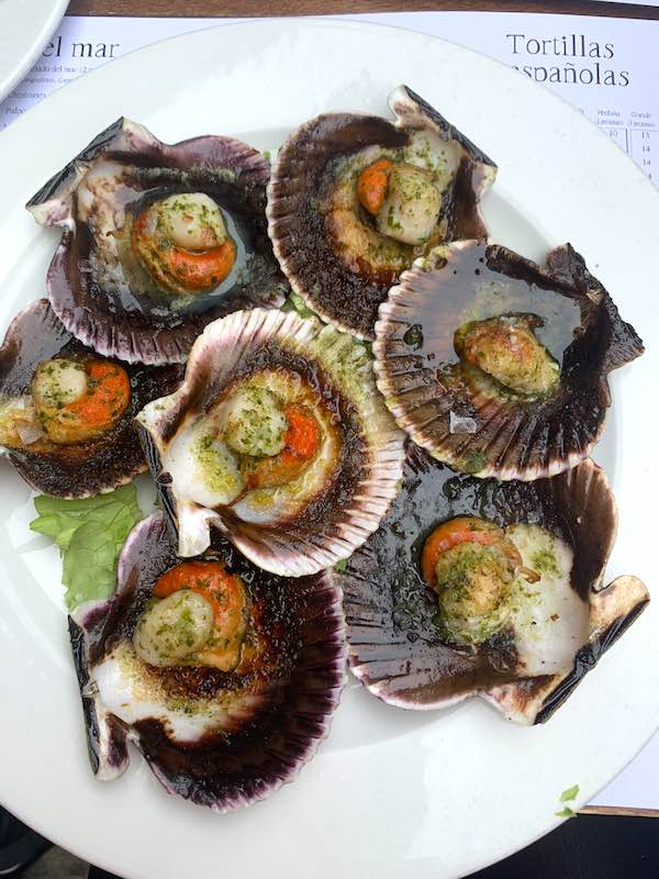 Galician scallops are mon the most popular foods in Spain