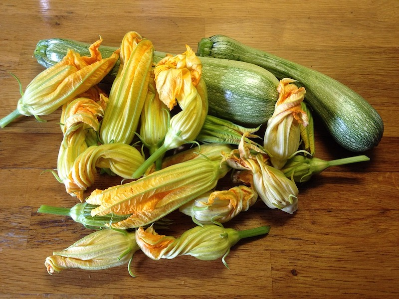 Fried zuchhini flowers from Rome are some of the best fried foods in the world