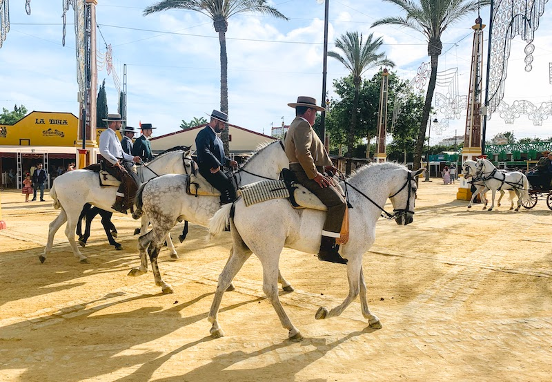 A day trip from Seville to Jerez is one of the bst thngs to do in Seville area